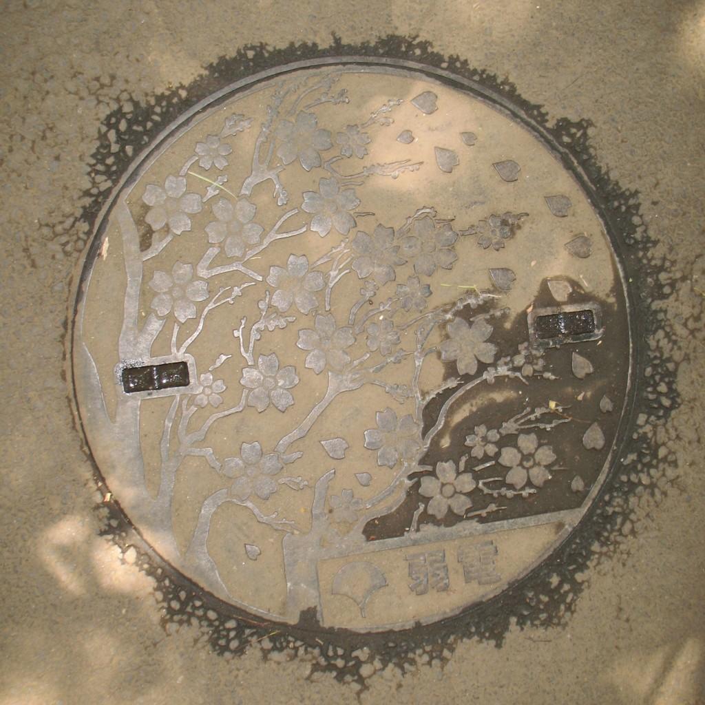 Канализационный люк в парке Уэно в Токио
